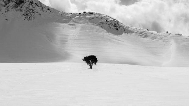 آثار برگزیده مسابقه عکاسی سونی 2018