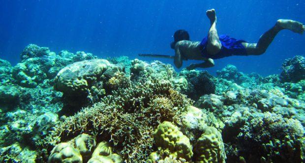 جهش ژنتیکی عشایر دریایی آسیای شرقی را به غواصانی فوقالعاده ماهر تبدیل کرده است