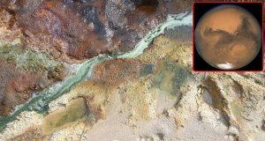 شواهد حیات مریخی در یکی از خلیجهای بریتانیا کشف شد!