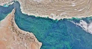 گرمایش زمین منطقه مرده دریای عرب را از همیشه بزرگتر کرده است!