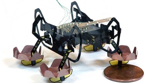 ربات سیار هاروارد