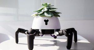 گلدان رباتیک