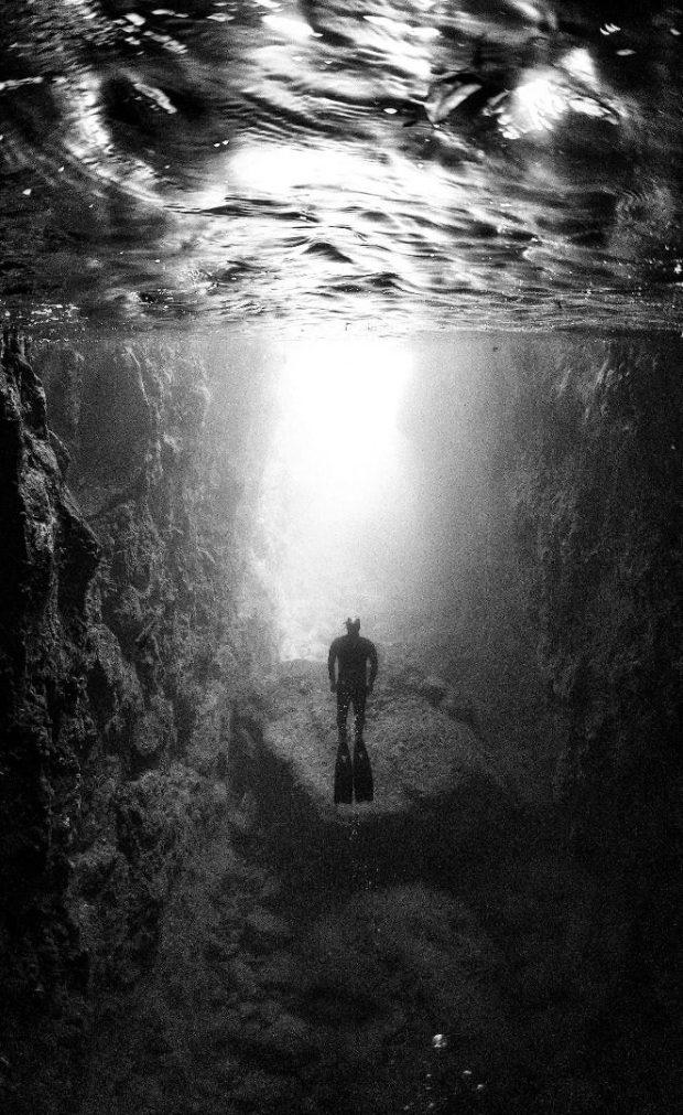 تصاویر سیاه و سفید از دنیای زیر آب