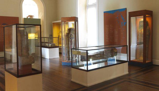 موزه تاریخ طبیعی برزیل