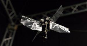 ربات پرنده DelFly Nimble