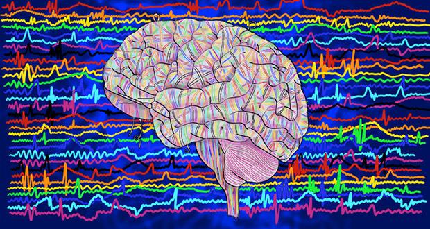 فعالیت مغزی انسان پس از تشخیص مرگ کامل