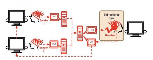 شبکه ارتباط مغزی