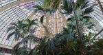 تصاویر دوربین هواوی آنر ویو 20