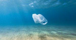 پلاستیک در معده نهنگ