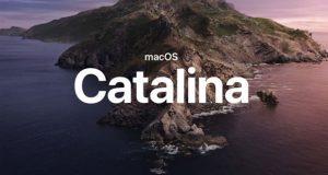 کاتالینا