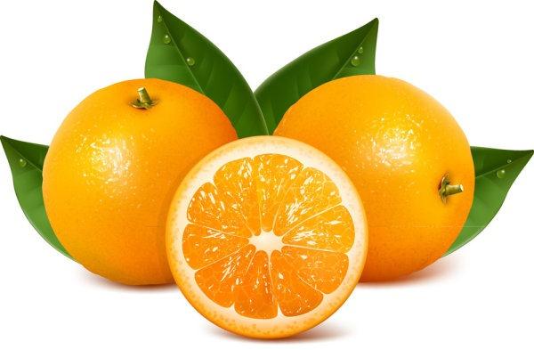 پرتقال دارای تیامین یا ویتامین B1 است