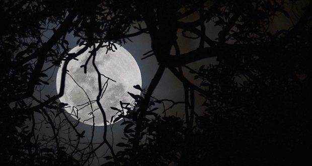 عجیب ترین تئوری های توطئه و باورهایی که در رابطه با ماه وجود دارد