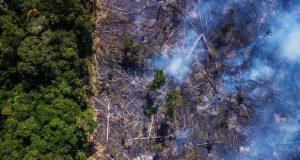 آتش سوزی جنگل های آمازون به سطح جدیدی از بحران رسید