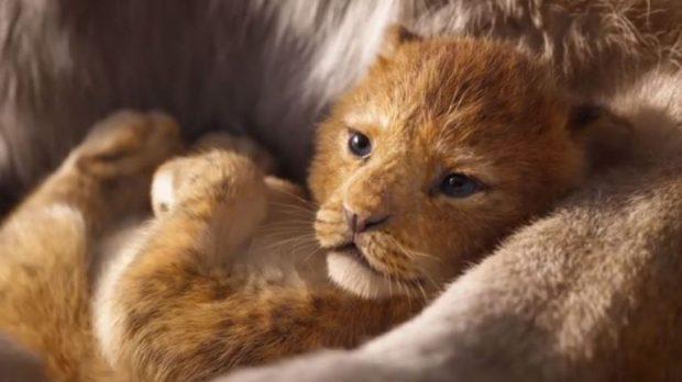 فیلم شیر شاه (Lion King)