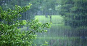 افزایش بارش باران