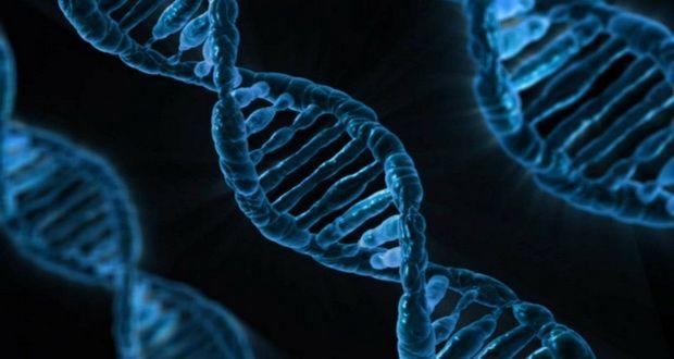 نامه محرمانه پنتاگون در رابطه با خطر آزمایش های دی ان ای منتشر شد