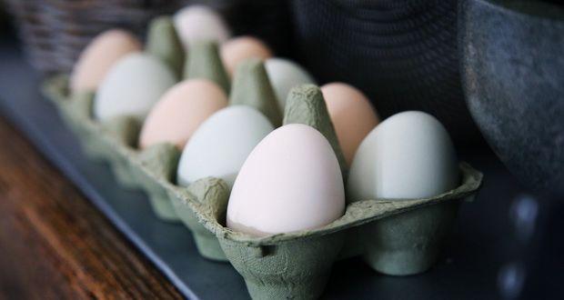مصرف روزانه تخم مرغ سلامتی را به خطر نمیاندازد