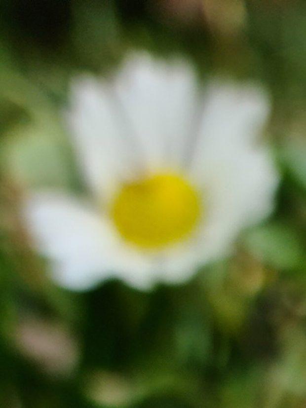 نمونه تصاویر دوربین گلکسی اس 20 اولترا