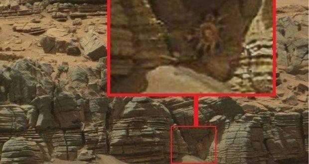 ادعای عجیب یک دانشمند آمریکایی در مورد حشرات مریخی خبرساز شد!
