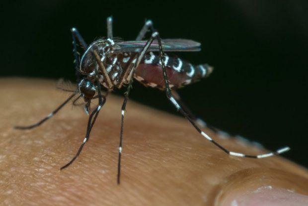 بدترین بیماری های عفونی