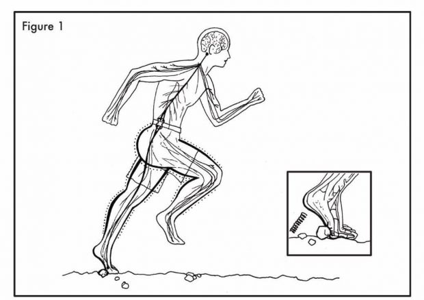 دویدن بدون کفش بهتر است یا با کفش؟