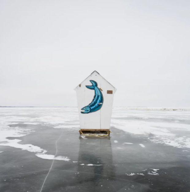 بهترین تصاویر رقابت عکاسی جهانی سونی 2020