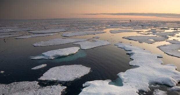 کشف مواد شیمیایی جاودانه در قطب شمال دانشمندان را نگران کرده است
