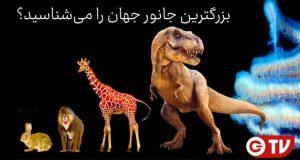 بزرگترین جانوران