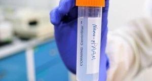 استفاده موفقیتآمیز از تکنیک اسب تروآ برای یک درمان آزمایشی سرطان