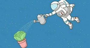 کاشتن سبزیجات در مریخ