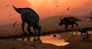 شواهد جدید موضوع انقراض دایناسورها را پیچیدهتر کرده است