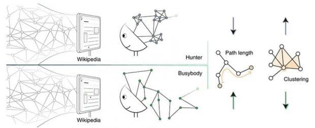 تحقیقاتی شگفتانگیز در مورد انواع کنجکاوی در انسانها