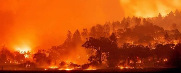 سال 2020 شدیدا به شکست رکورد داغ ترین سال تاریخ نزدیک بود
