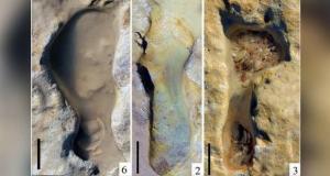 کشف ردپای 100 هزار ساله بچه نئاندرتال ها در اسپانیا خبرساز شد
