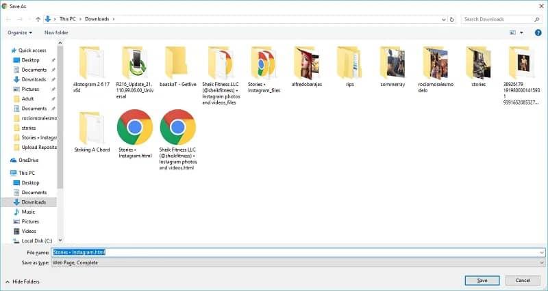 آموزش کامل دانلود استوری اینستاگرام در کامپیوتر - 6